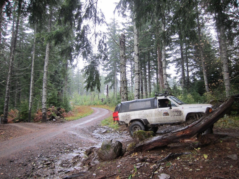 Cedar Tree / Tillamook State Forest - Waypoint 3: Straight Across the Intersection