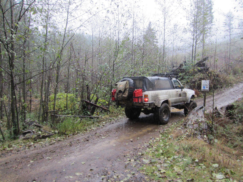 Cedar Tree / Tillamook State Forest - Waypoint 1: Trailhead