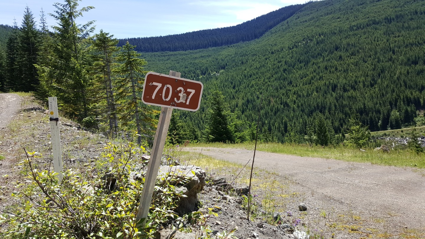 NF-7030 to Stampede Pass - Waypoint 12: Intersection with NF-7037