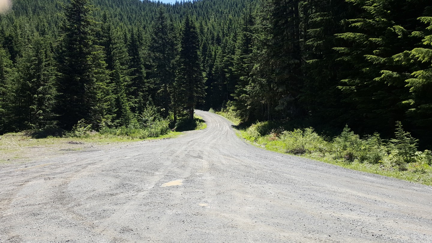 NF-7030 to Stampede Pass - Waypoint 4: Fork in the Road