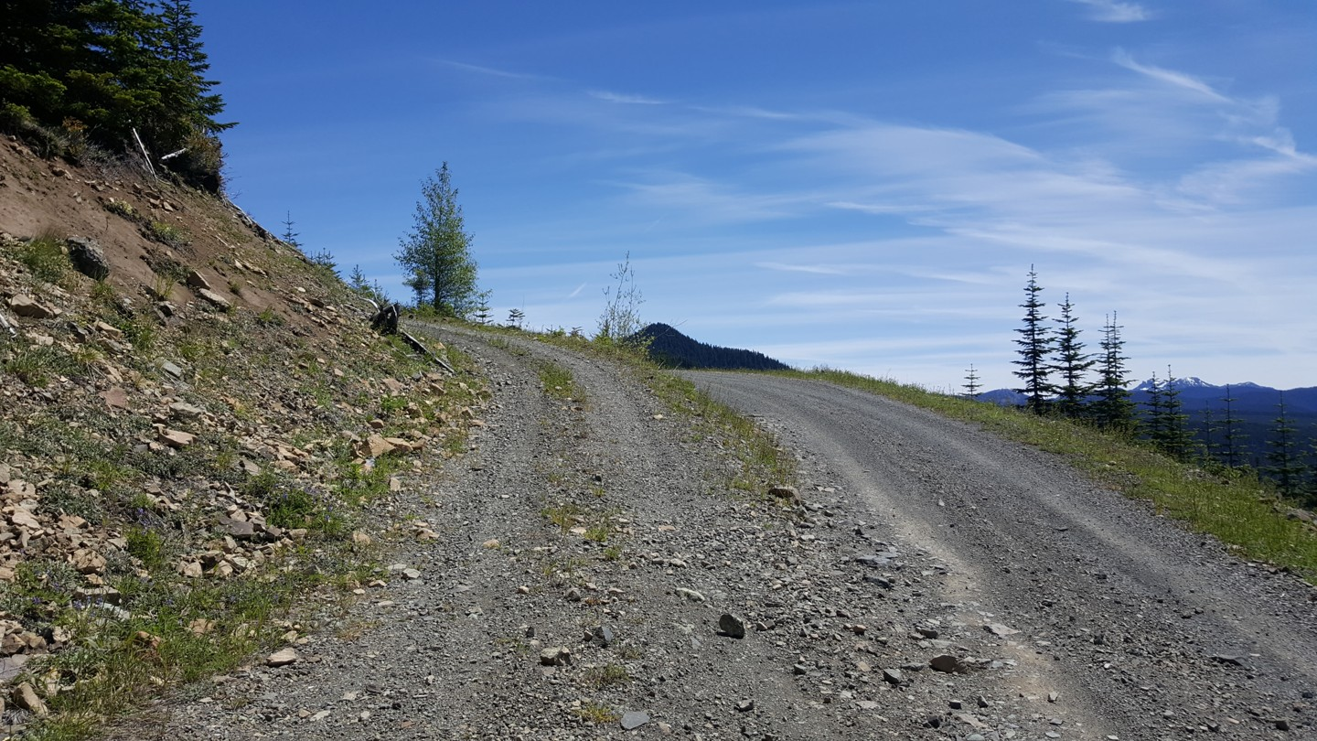 NF-7030 to Stampede Pass - Waypoint 7: Intersection with unknown Road
