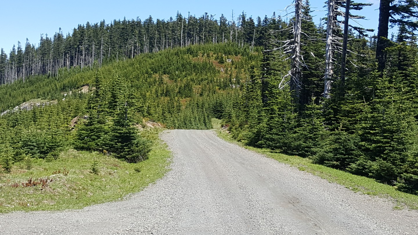 NF-7030 to Stampede Pass - Waypoint 10: Unknown Road on Left