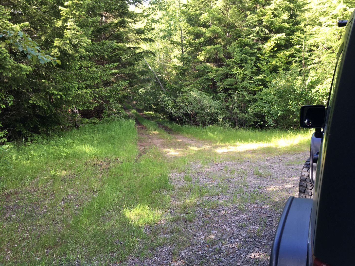 Midnight Creek / NF Road 7010 - Waypoint 7: Trail Intersection / #3424