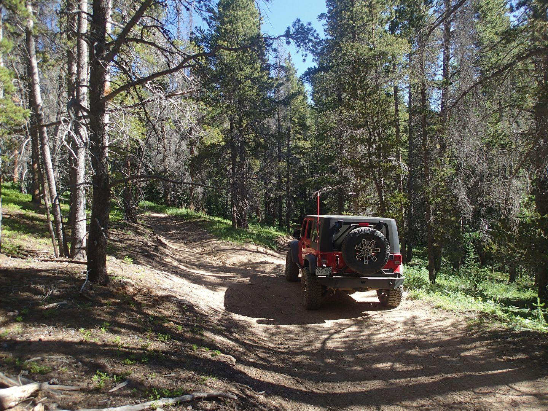 Miller Creek - Waypoint 3: Fork