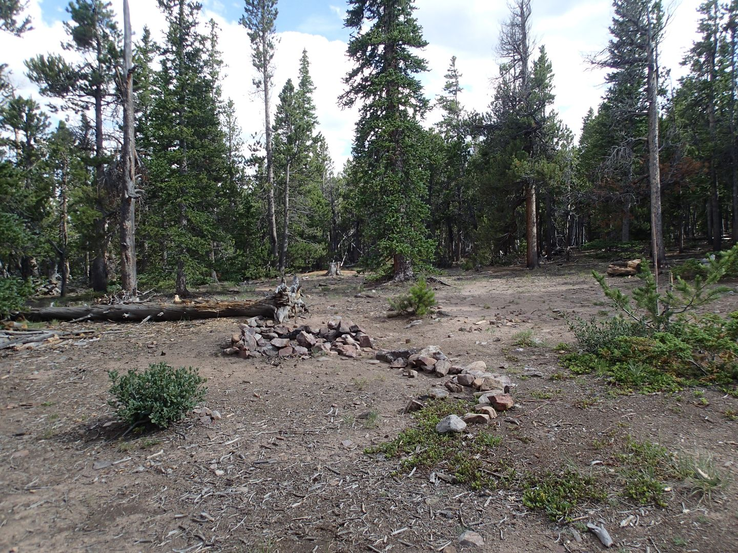 Camping: Brown's Pass