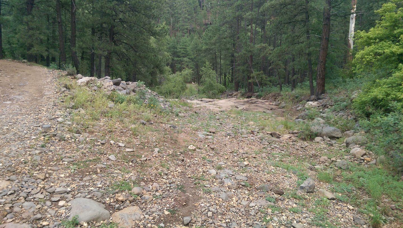 Highlight: Fry Lake Trail
