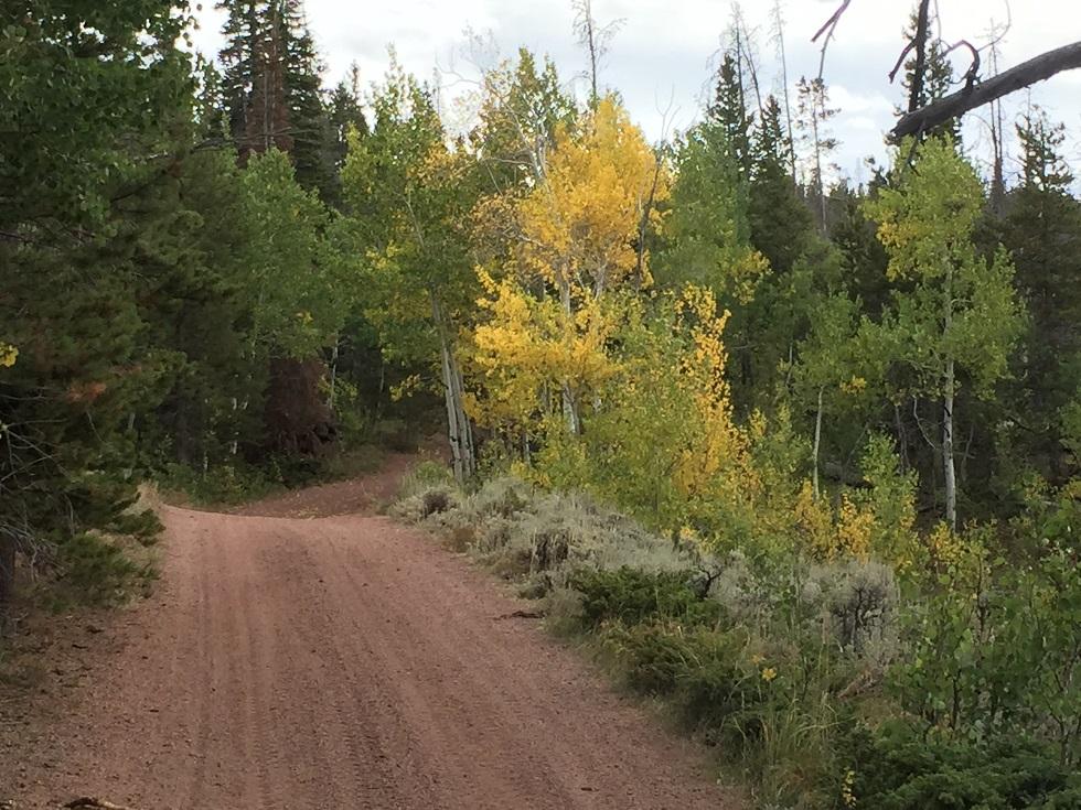 Highlight: Sand Creek Pass