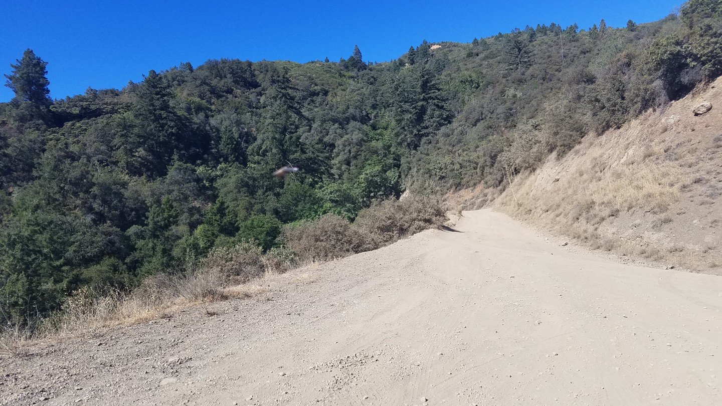 Trail Review: Maple Spring Road - Silverado Canyon - 5S04
