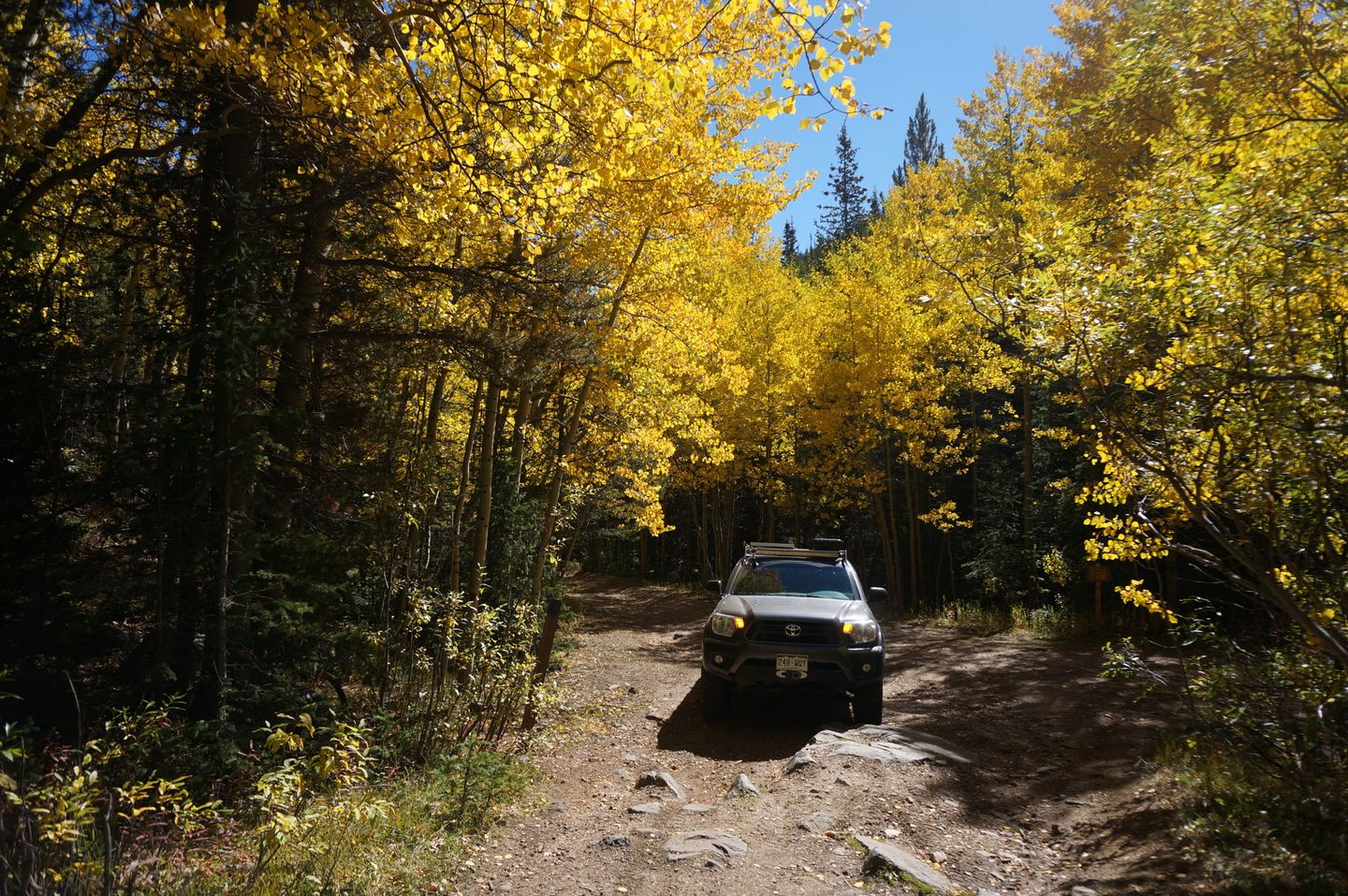 Highlight: Mosquito Creek Road