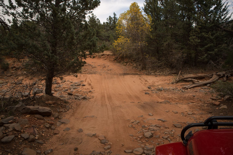 FS152 - Dry Creek Road - Waypoint 5: Dry Creek Crossing
