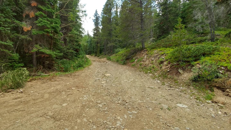 Ballard Road - Waypoint 4: FR 129a