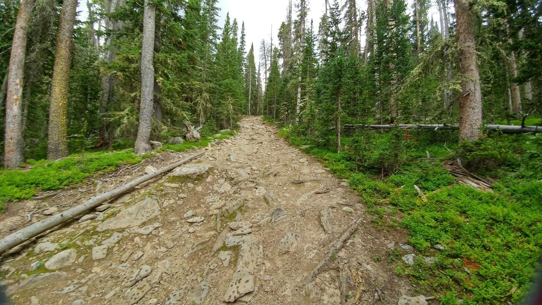 Ballard Road - Waypoint 10: More Rocks