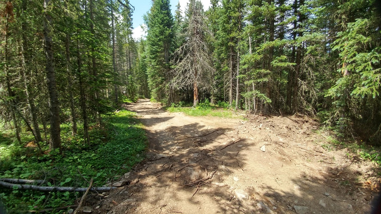 Ballard Road - Waypoint 7: Rocky Climb