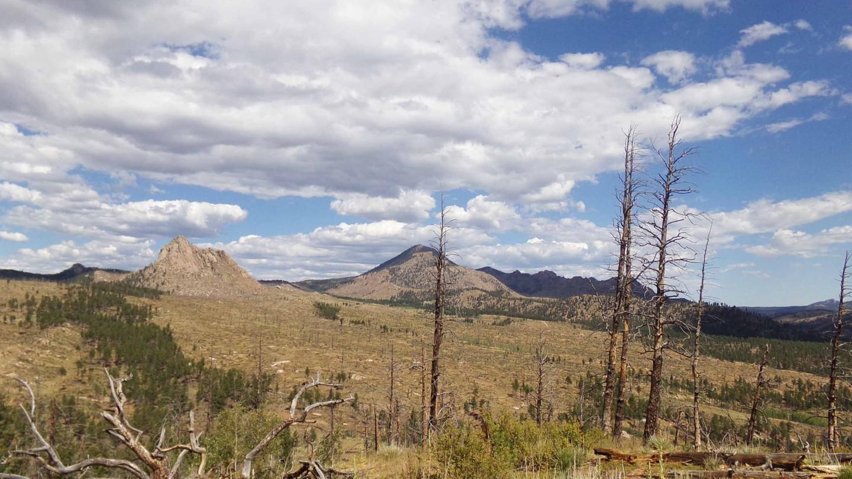 Highlight: Little Creek Ridge