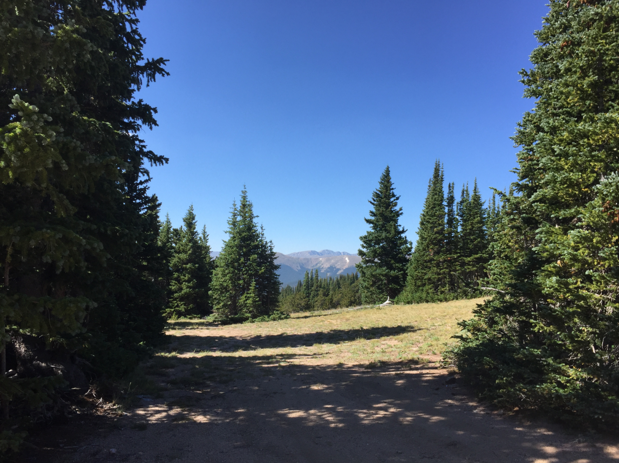 Trail Review: Bill Moore Lake