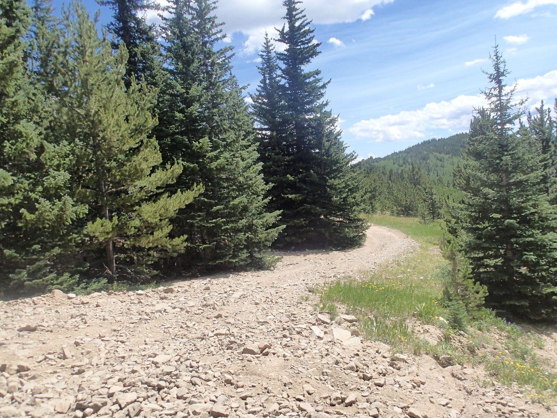 Bill Moore Lake - Waypoint 12: FR 171.3C