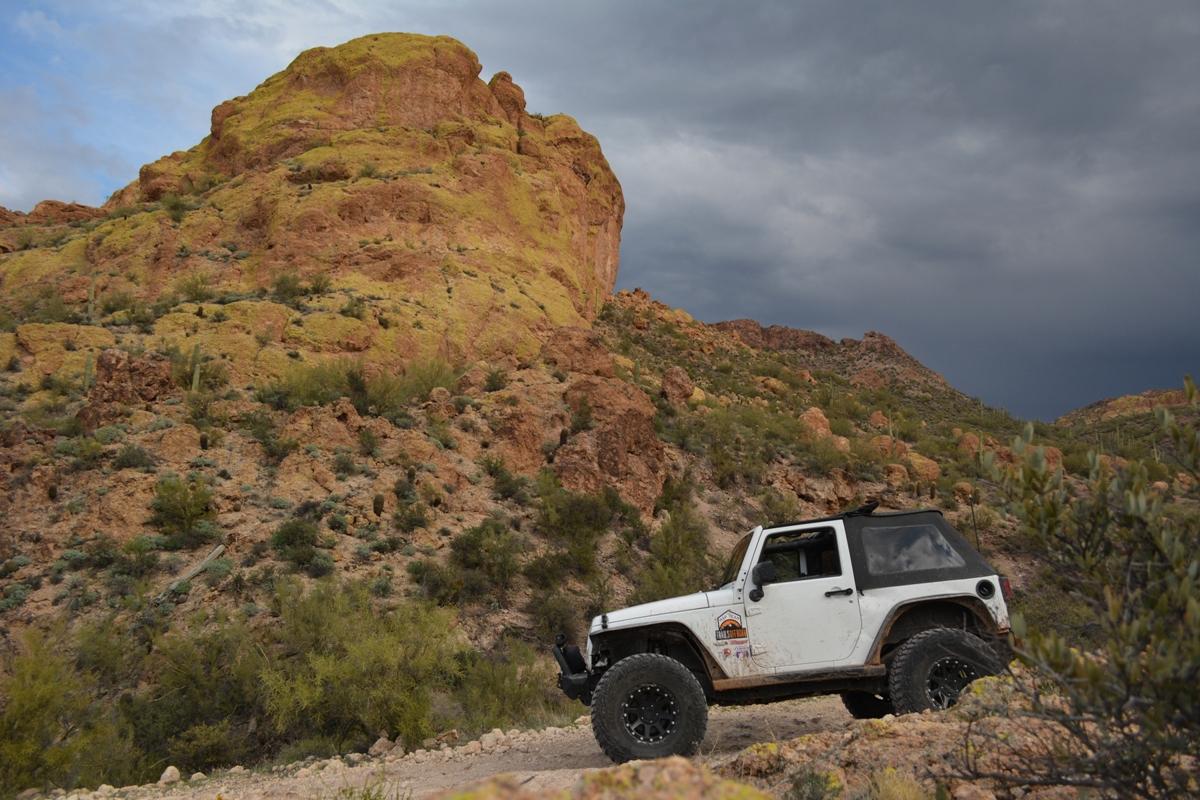 Highlight: Bulldog FR 12 Willow Canyon AZ