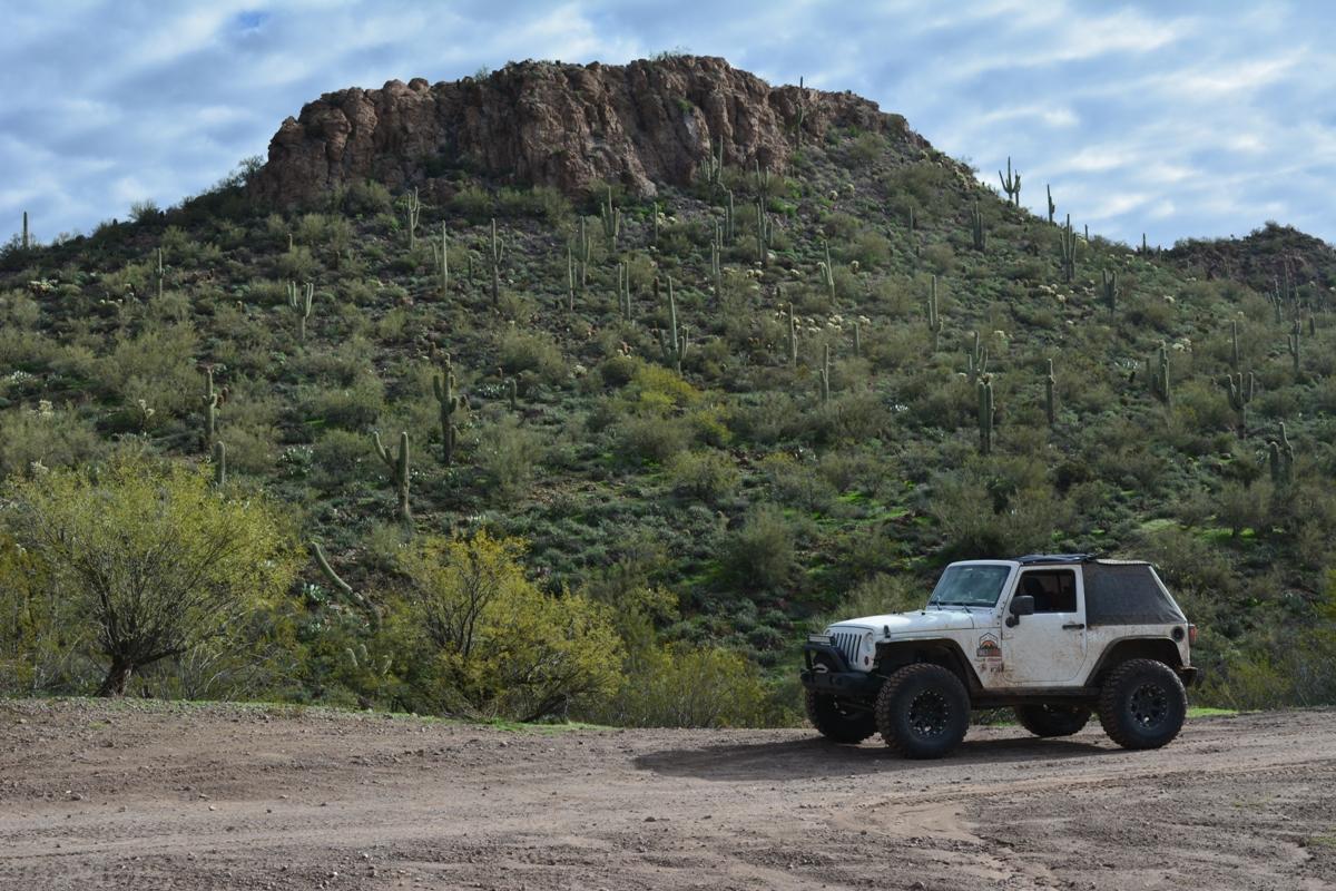 Highlight: Bulldog FR 3512 AA Pit  Arizona