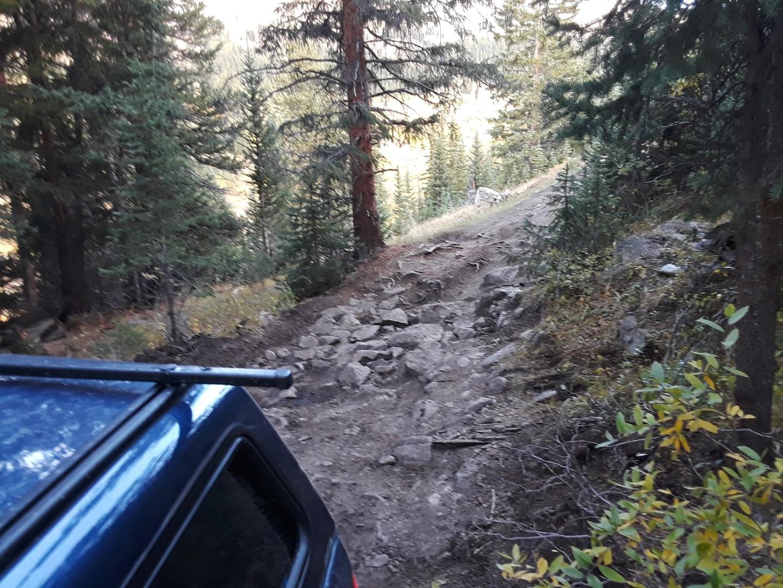 Trail Review: Birdseye Gulch