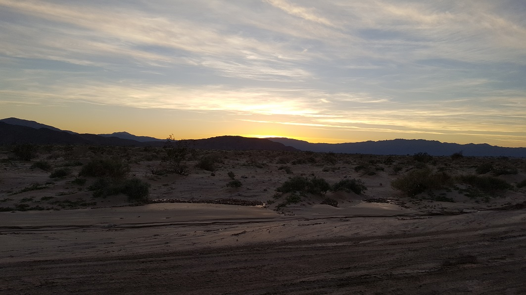 Highlight: Palo Verde Wash