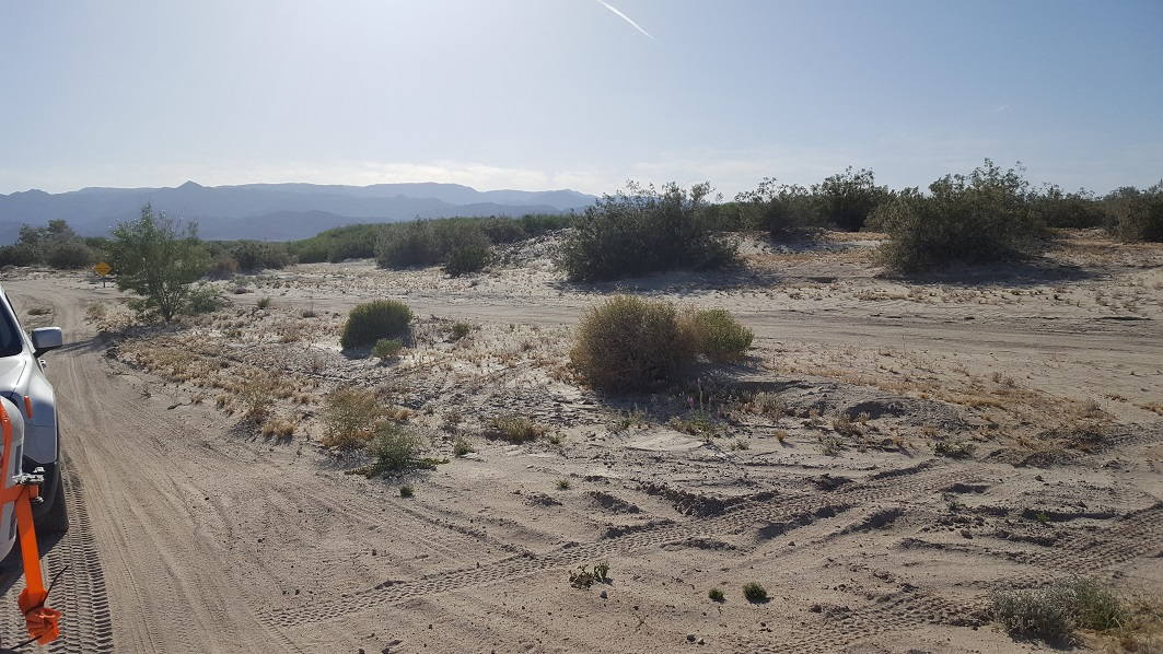 South Carrizo Creek - Anza Borrego - Waypoint 3: End of Trail (Vallecito Wash, Canyon Sin Nombre, and Carrizo Creek)
