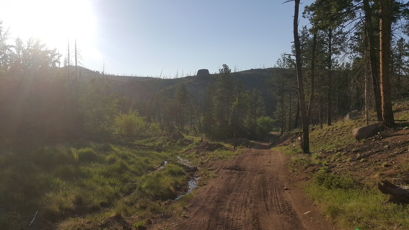 Manchester (Manchester Creek) - Waypoint 16: Signal Butte (FS 362) (9.1mi)