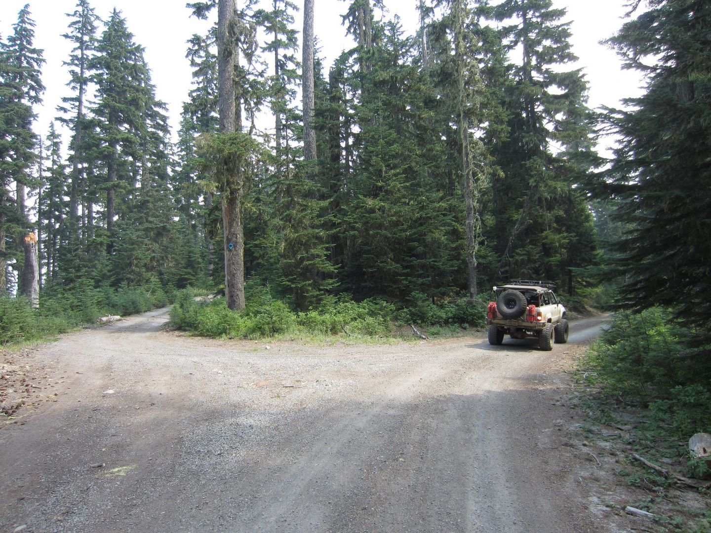 Bennett Pass Road - Waypoint 4: Take Southeast (Right) Trail at 3550-630