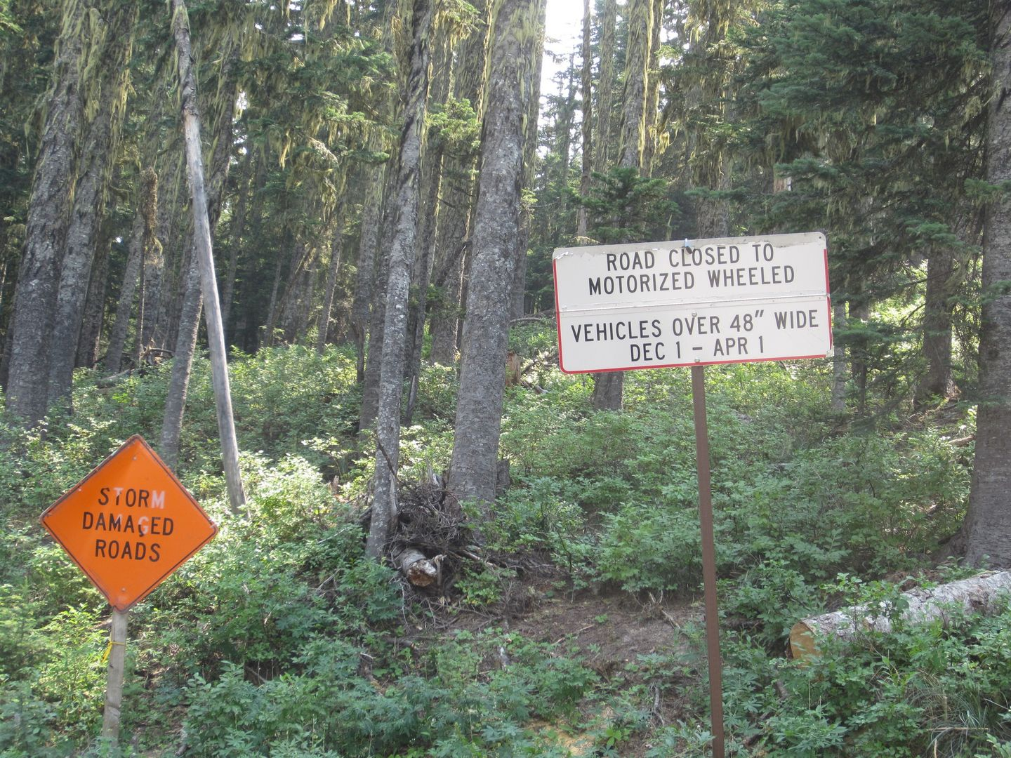 Bennett Pass Road - Waypoint 2: Stay East at 3550-250