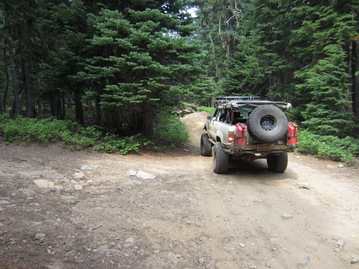 Bennett Pass Road - Waypoint 9: Stay North at Unmarked Trail