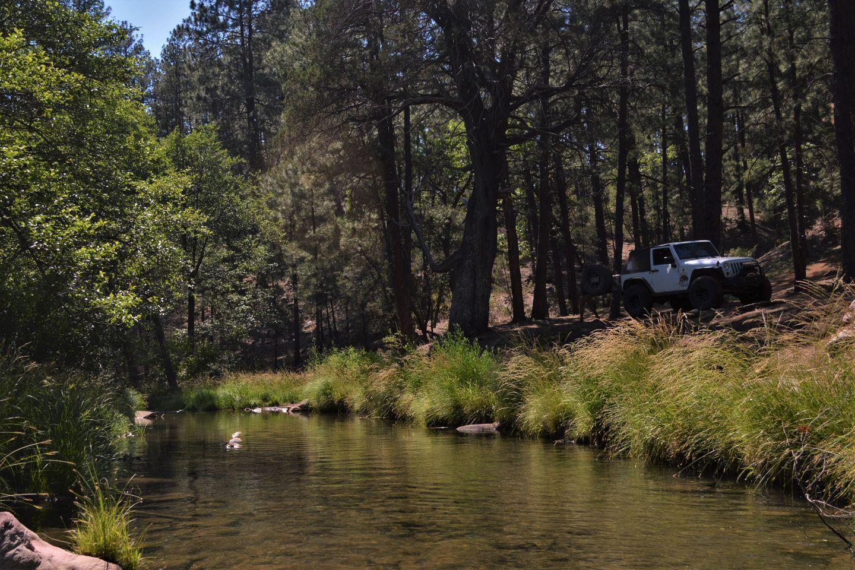 Highlight: Haigler Creek