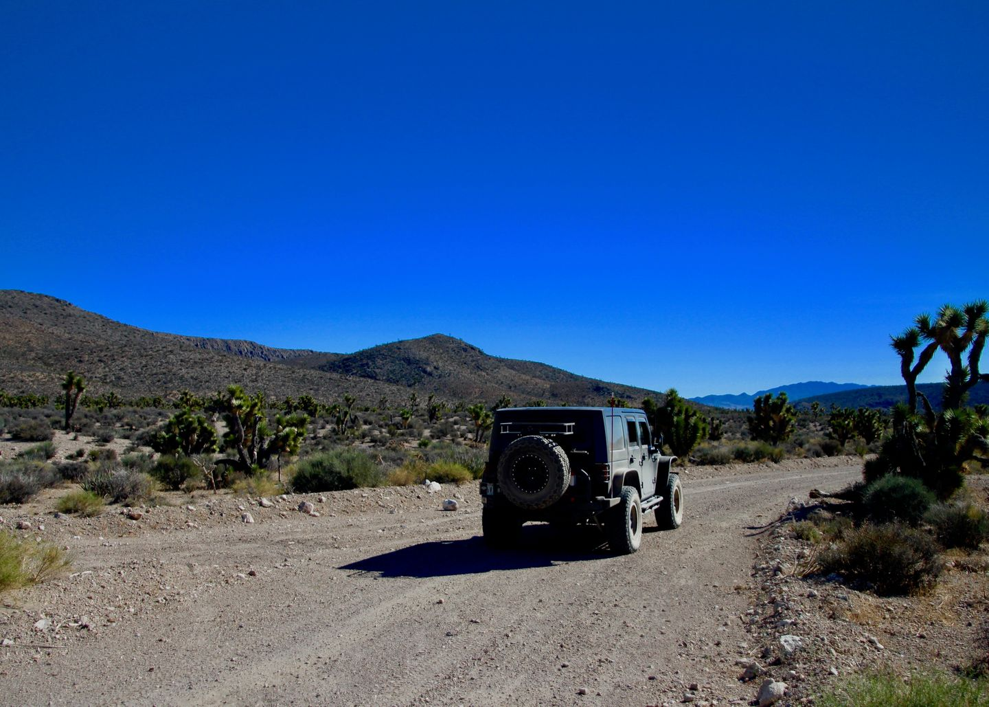 Badger Valley Loop Nevada - Waypoint 10: Stay on Main Road