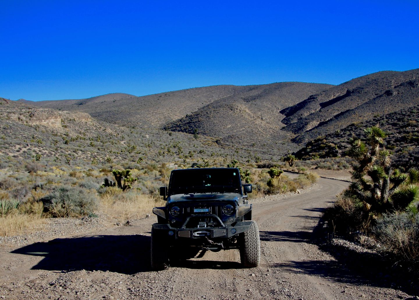 Badger Valley Loop Nevada - Waypoint 4: Take Road to the East