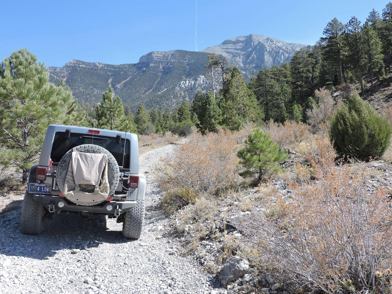 Highlight: Wallace Canyon Road
