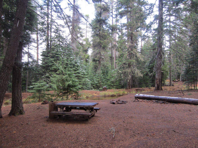 Camping: Barlow Trail