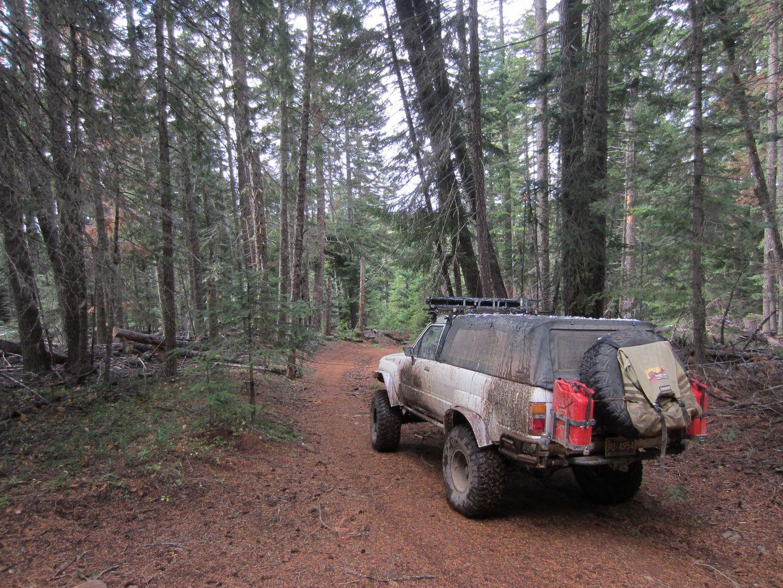 Highlight: Barlow Trail
