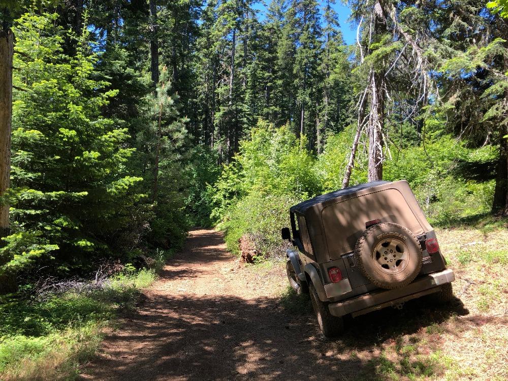 Trail Review: Barlow Trail