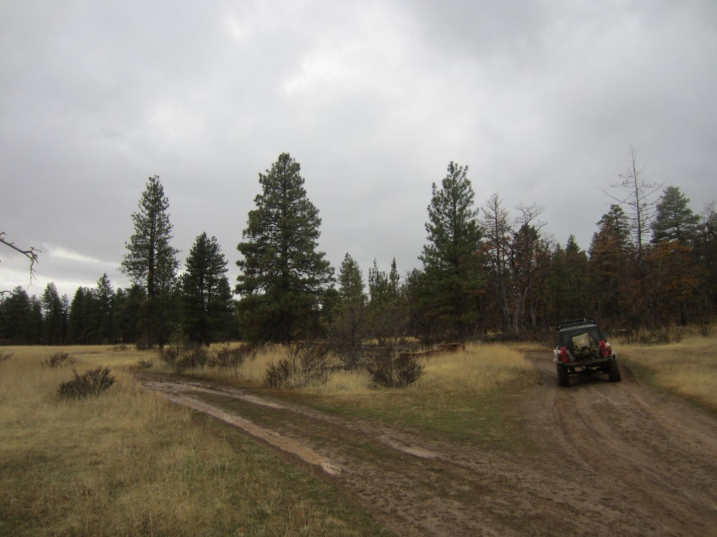 Barlow Trail - Waypoint 3: Stay Right