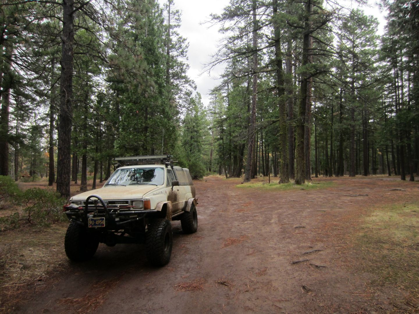 Barlow Trail - Waypoint 6: Continue Straight