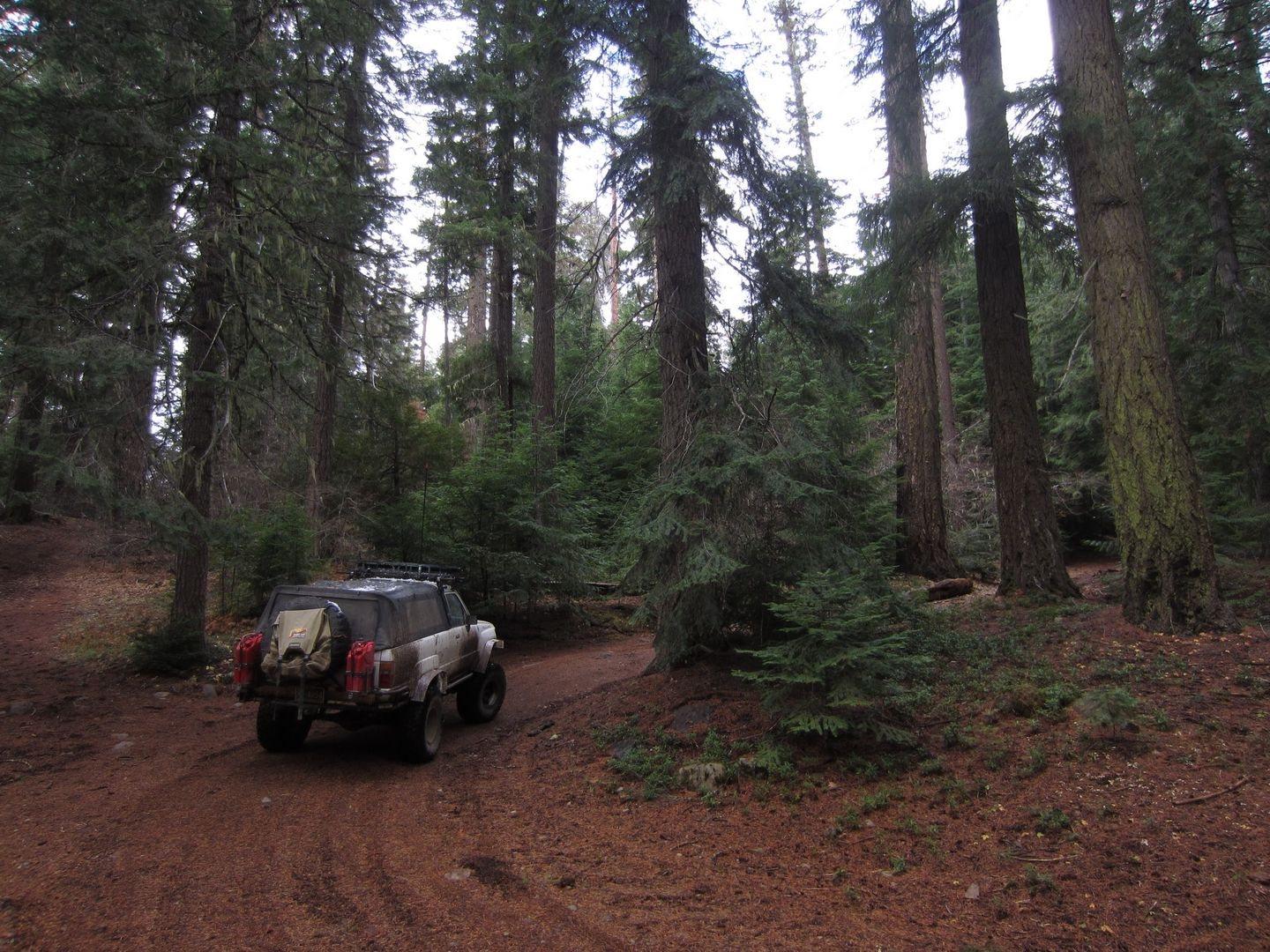 Barlow Trail - Waypoint 16: Go Right