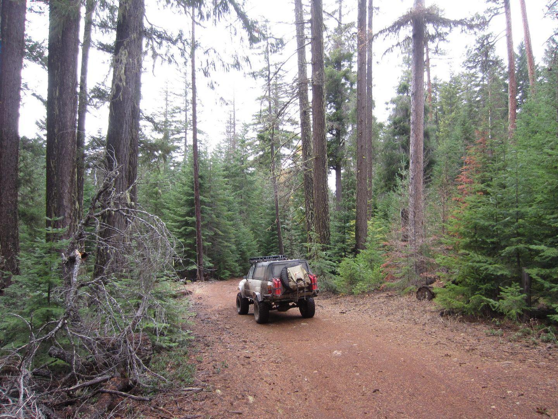 Barlow Trail - Waypoint 17: Go Straight
