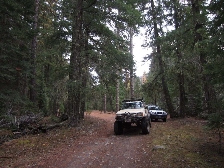 Barlow Trail - Waypoint 23: Go Straight