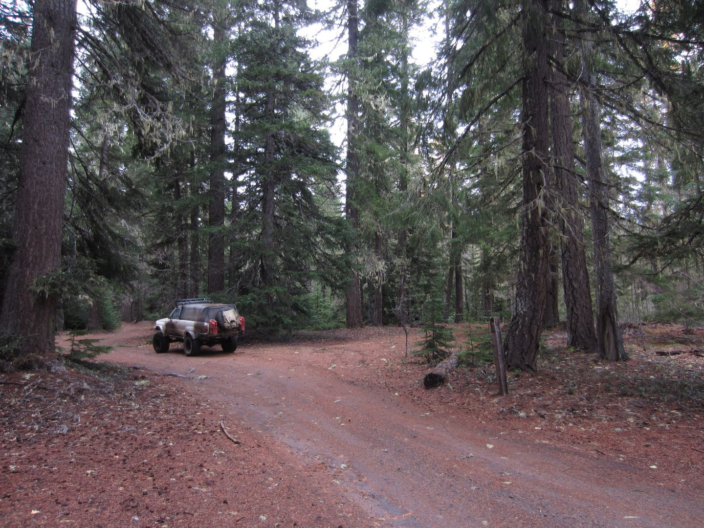 Barlow Trail - Waypoint 37: Continue Straight