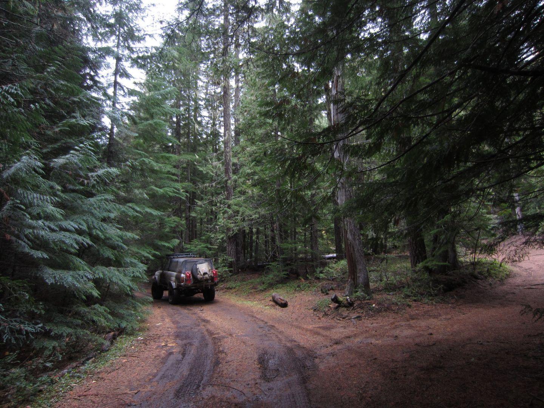 Barlow Trail - Waypoint 39: Go Left