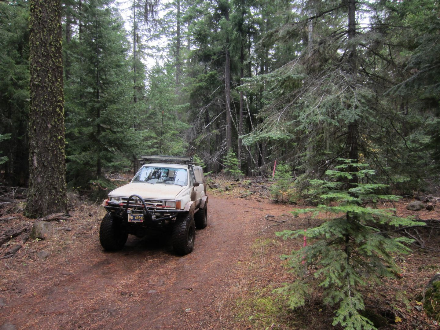 Barlow Trail - Waypoint 8: Go Right - Trail to Left goes to Campsites