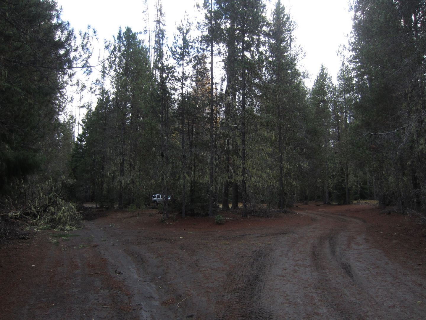 Barlow Trail - Waypoint 29: Continue Straight