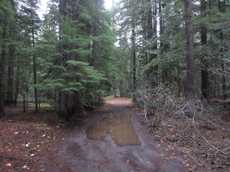 Barlow Trail - Waypoint 36: Barlow Creek Campground