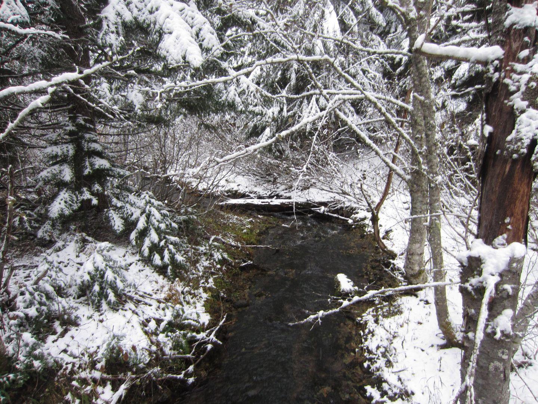 Barlow Trail - Waypoint 42: Go Left