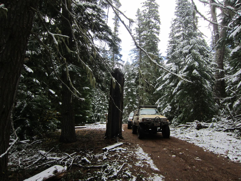 Barlow Trail - Waypoint 13: Go Left