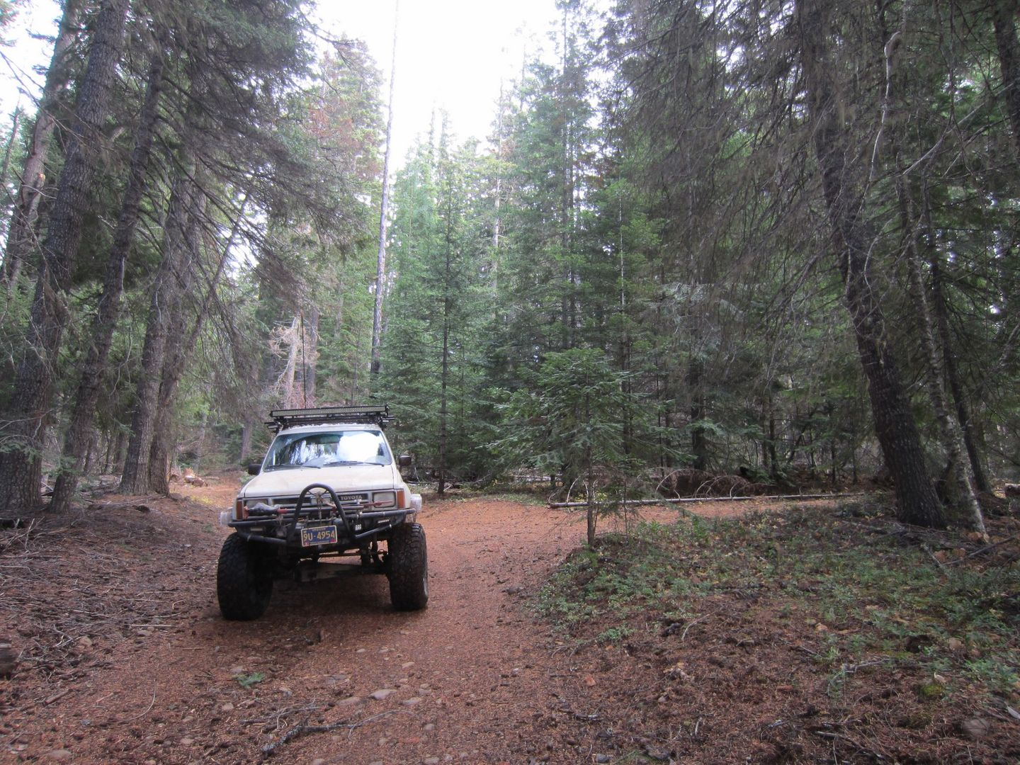 Barlow Trail - Waypoint 15: Go Right