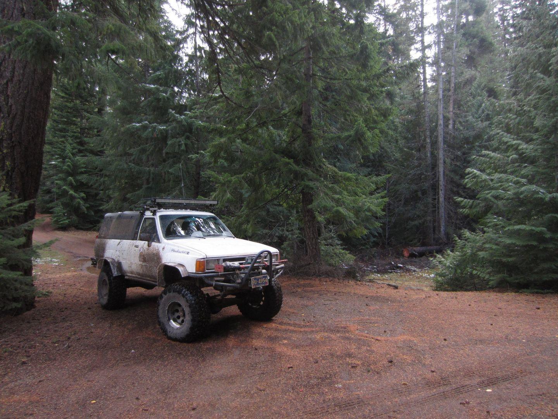 Barlow Trail - Waypoint 18: Forest Creek Campground